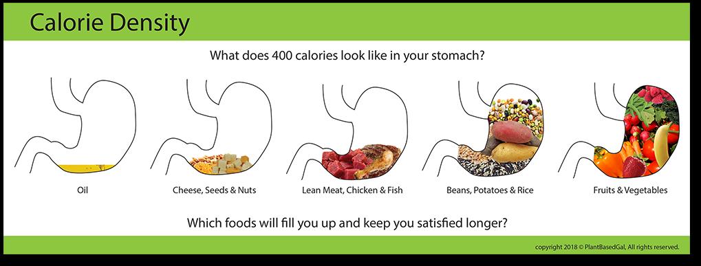simptoms gateau pauvre en calorie